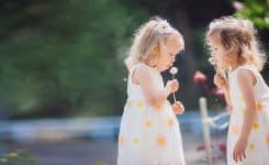 What are the pros of having twins?